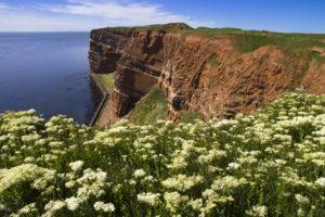 Nordsee-Insel Helgoland