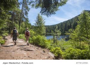 Wanderer am Herrenwieser See, Westweg, Forbach, Schwarzwald, Baden-Württemberg, Deutschland, Europa