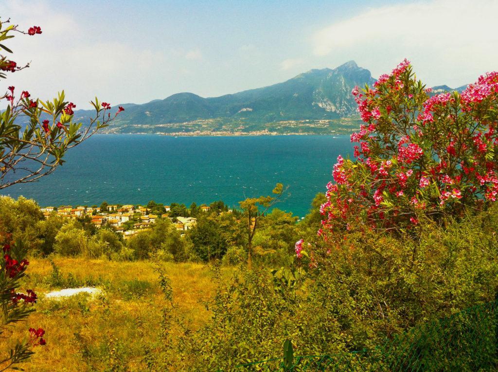 Blick über Torri del Benaco auf den Gardasee