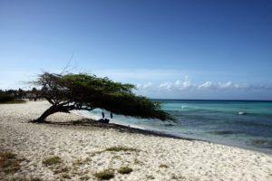 Sandstrand auf Aruba, niederländische Karibik
