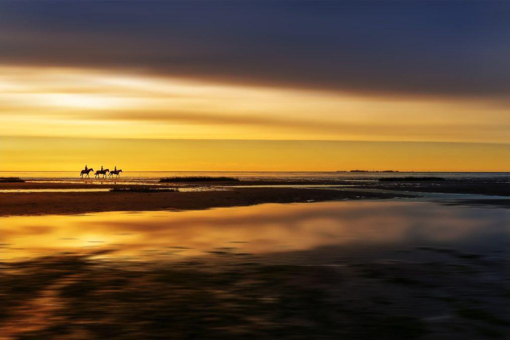 Wanderreiten Nordsee: Reiter im Watt an der Nordsee