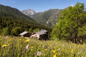 Ecovillaggio Sagna Rotonda, Piemont