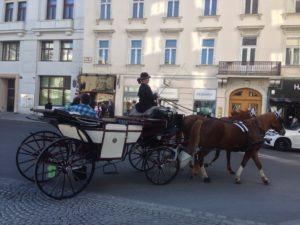 Fiaker in der Wiener Hofburg