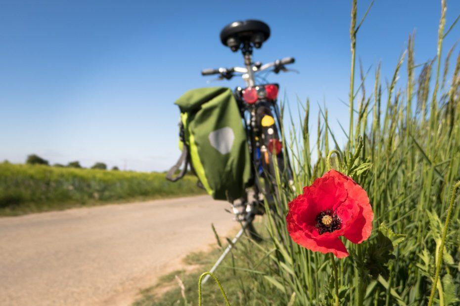 Radreisen, Radwandern und Radtouren