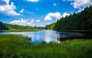 Bayrischer Wald, Alpsee
