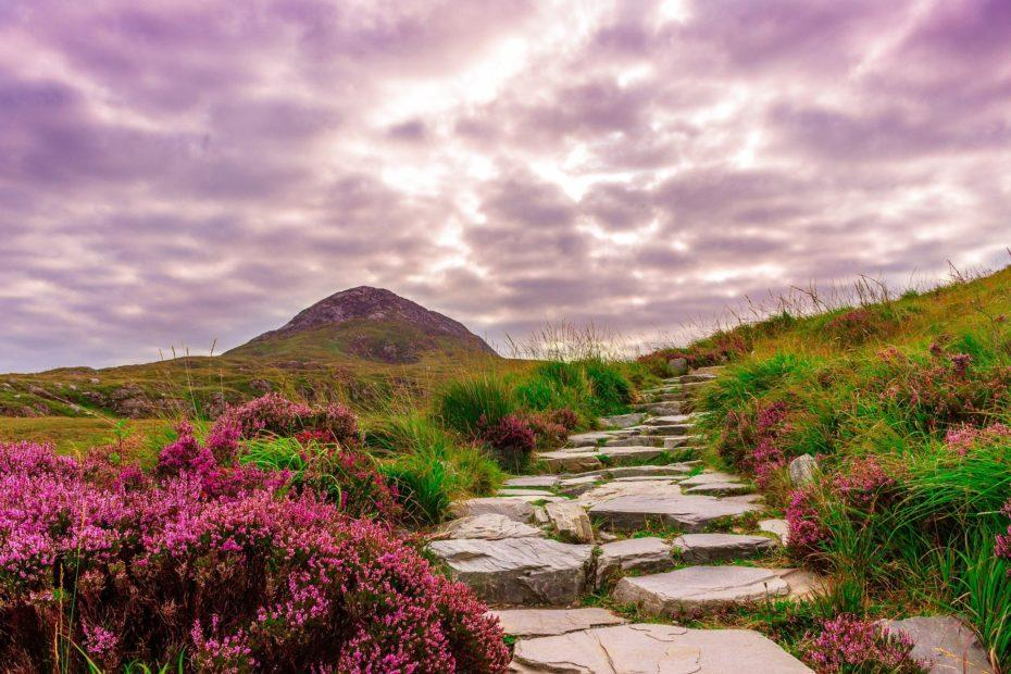 Irland, Connemara-Nationalpark