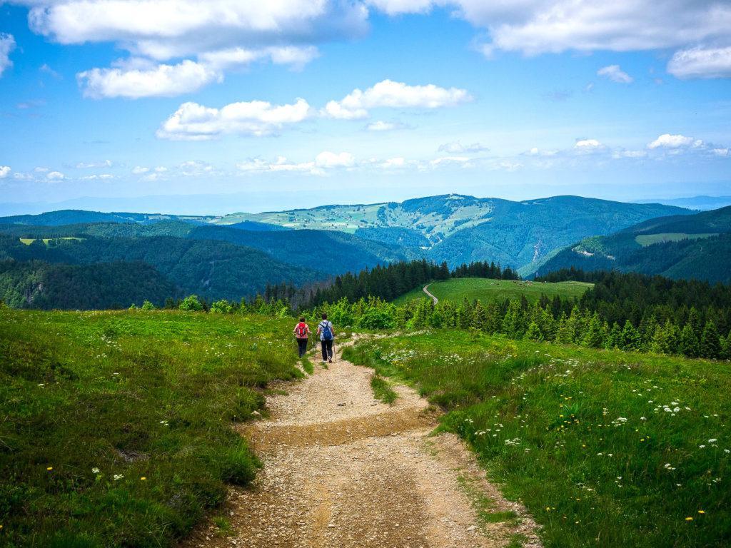 Wandern am Feldberg im Schwarzwald