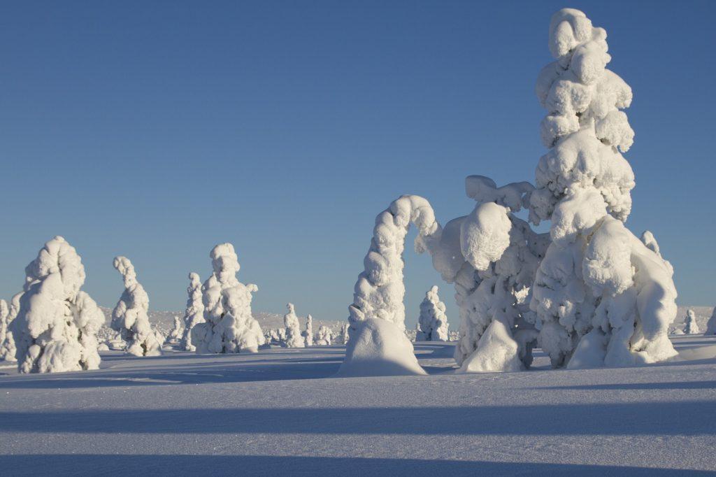 Winterlandschaft Finnland