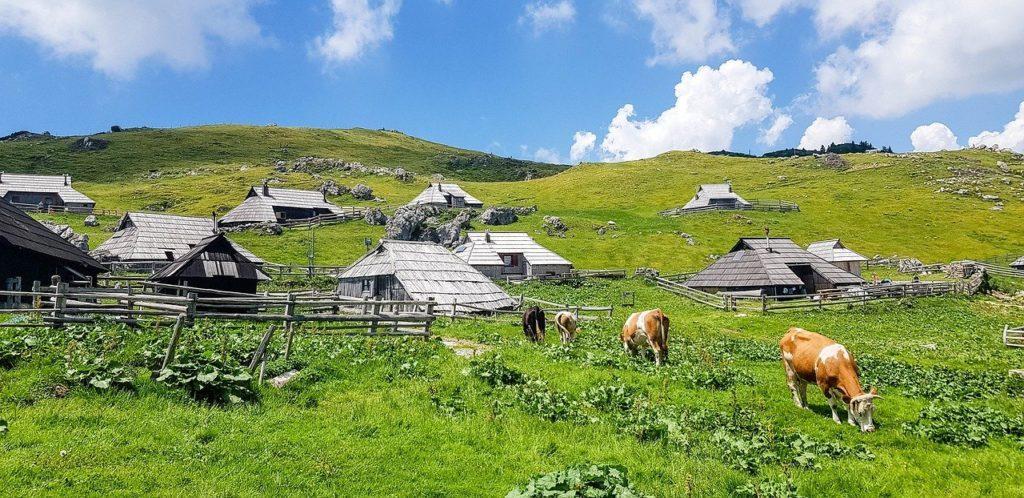 Hirtendorf Velika Planina in Slowenien